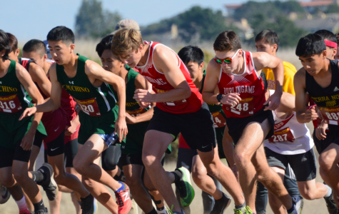 Cross country wraps up season