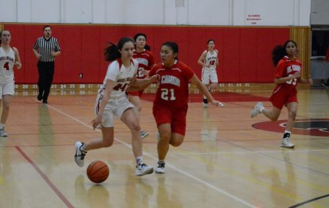 Girls basketball makes it to quarterfinals