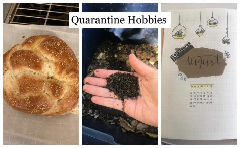 Three Burlingame students share hobbies they have started since the beginning of Quarantine.