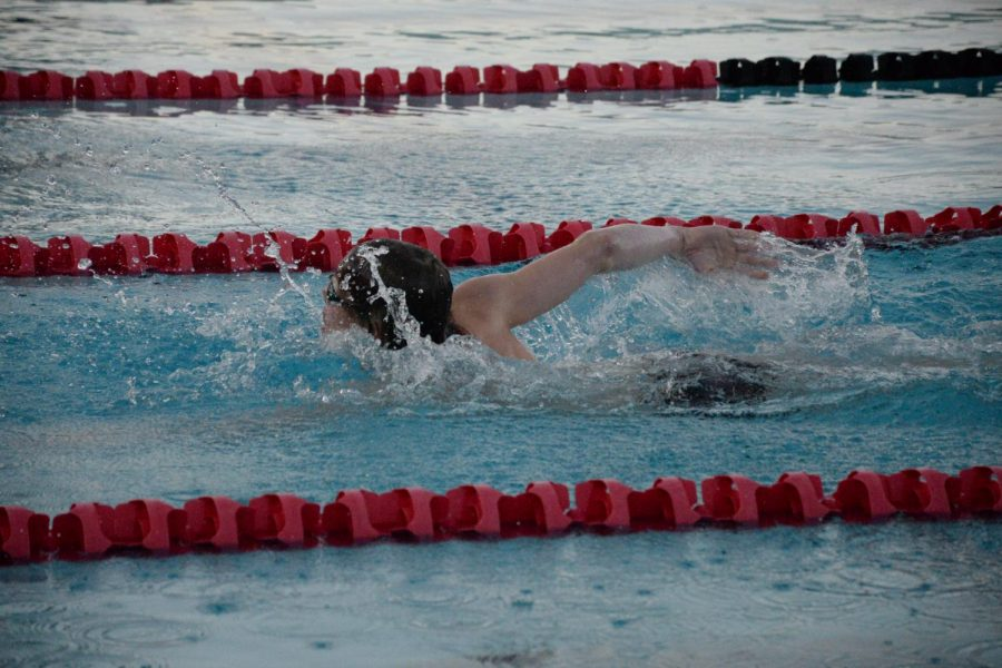 Junior Lodo Platerink swims onward during his freestyle laps at practice.